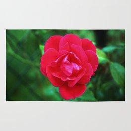 Pink Fall Rose Rug
