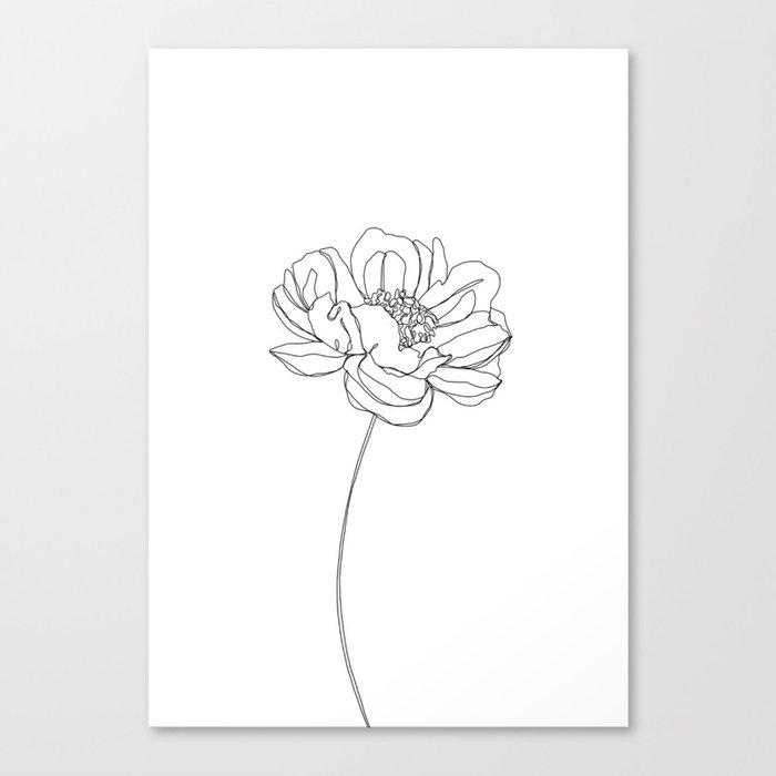 Single flower line drawing - Hazel Canvas Print