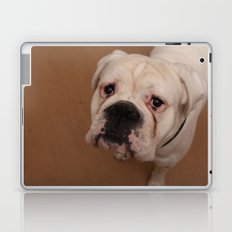 My dog Konstantin Laptop & iPad Skin