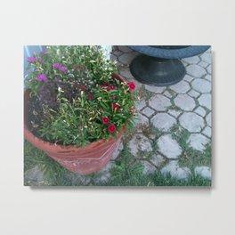 Backyard Treasures Metal Print