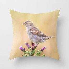 Female Sparrow Throw Pillow