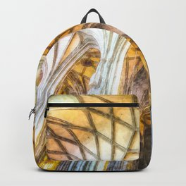 St Stephens Cathedral Vienna Art Backpack