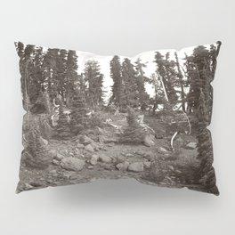 Alpine Landscape Pillow Sham