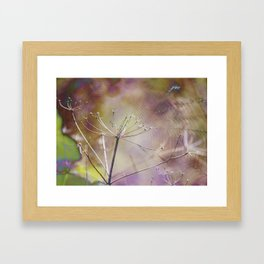 Spiderweb :: Come Hither Framed Art Print