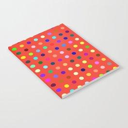 Olmesartan Notebook