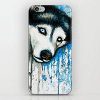 husky iPhone & iPod Skins featuring Husky by Villarreal
