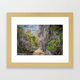 Are you checking me out? Framed Art Print