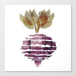 Beet Canvas Print