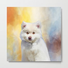 American Eskimo Dog Art Portrait Metal Print