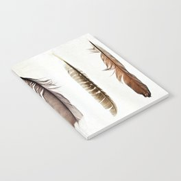 Five Feathers Notebook