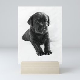 Black labrador puppy Mini Art Print