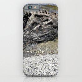 Driftwood tree iPhone Case
