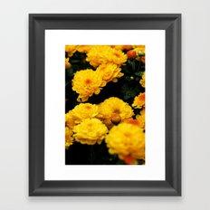 Golden Dew Drops II. Framed Art Print