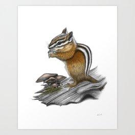 Chipmunk and mushrooms Art Print