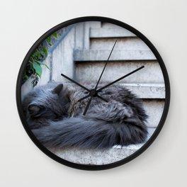 Ash Cat. Wall Clock