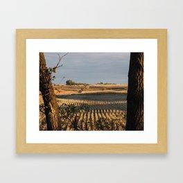 Autumn Corn Framed Art Print