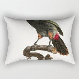 Black-necked Aracari from Histoire Naturelle des Oiseaux de Paradis et Des Rolliers (1806) by Jacque Rectangular Pillow