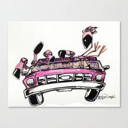 Designated Flamingo Canvas Print