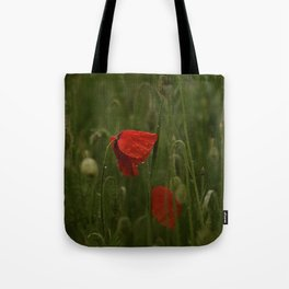 Red Poppies at Dusk Tote Bag