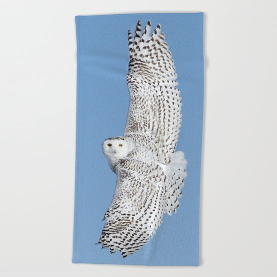 Flight of the goddess Beach Towel