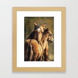 Brotherly Love - Pryor Mustangs Framed Art Print