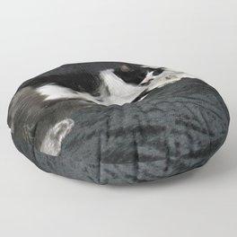 3 cats lounging Floor Pillow