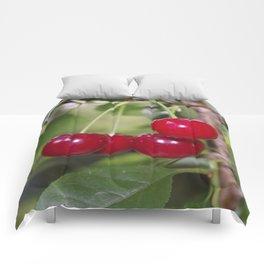 Cherries, fresh on the tree Comforters
