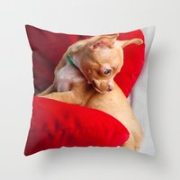 chihuahua Throw Pillows featuring Chihuahua by Luca Spanu