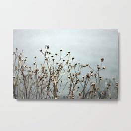 Blue Weeds Metal Print
