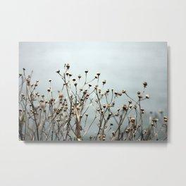 Blue Weeds Metal Print