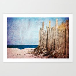 Cape Cod Sand Dunes Art Print