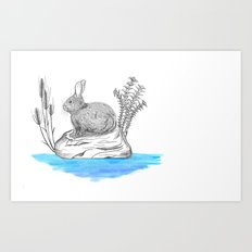 Rabbit in an island Art Print