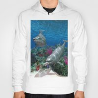 dolphins Hoodies featuring Dolphins by Simone Gatterwe