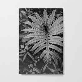 Glowing Fern Metal Print