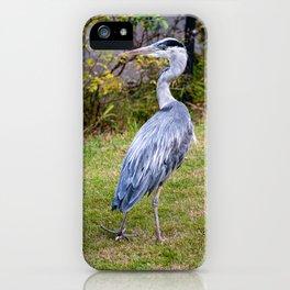 Heron on Patrol iPhone Case