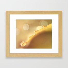 Powdered Sunshine Framed Art Print