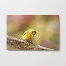 Golden Summer Metal Print