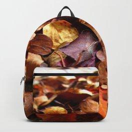 Fall Leaves Away Backpack