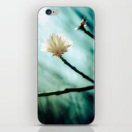 The Dream iPhone Skin