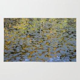 Fall Reflection Rug