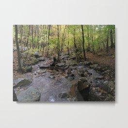 Stream on the Appalachian Trail Metal Print
