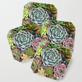 Succulent Garden Coaster