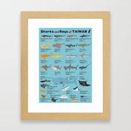 Sharks and Rays of Taiwan Framed Art Print
