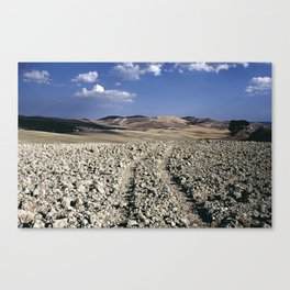 plowed field Canvas Print