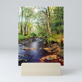 Autumn stream running into Agden Bog Nature Reserve Mini Art Print