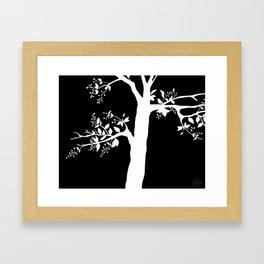 Chokecherry Tree Framed Art Print
