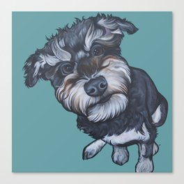 Benji the Schnoodle Canvas Print