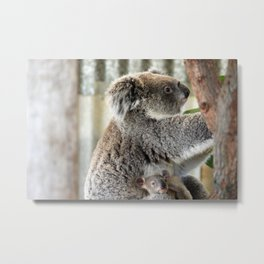 Mother Koala and Baby Metal Print