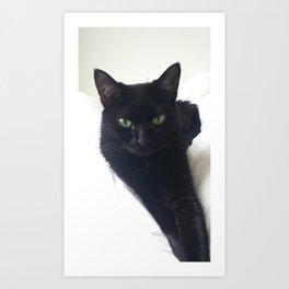 Phoebe the Cat Chilaxing Art Print