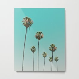 palm trees. las palmeras Metal Print